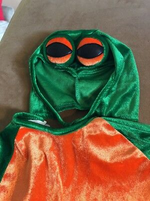 Frog Feet Costume (Green Frog Toddler 2 3 Costume with Hood Feet Halloween Tie Back Long)