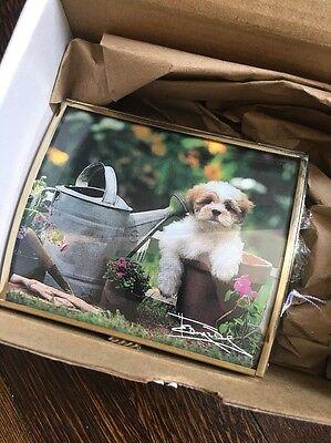 NIB Harvey Edwards Via Vermont Dog In Flower Pot Music Box 509450