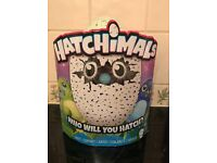 Hatchimals Draggles Green or Purple