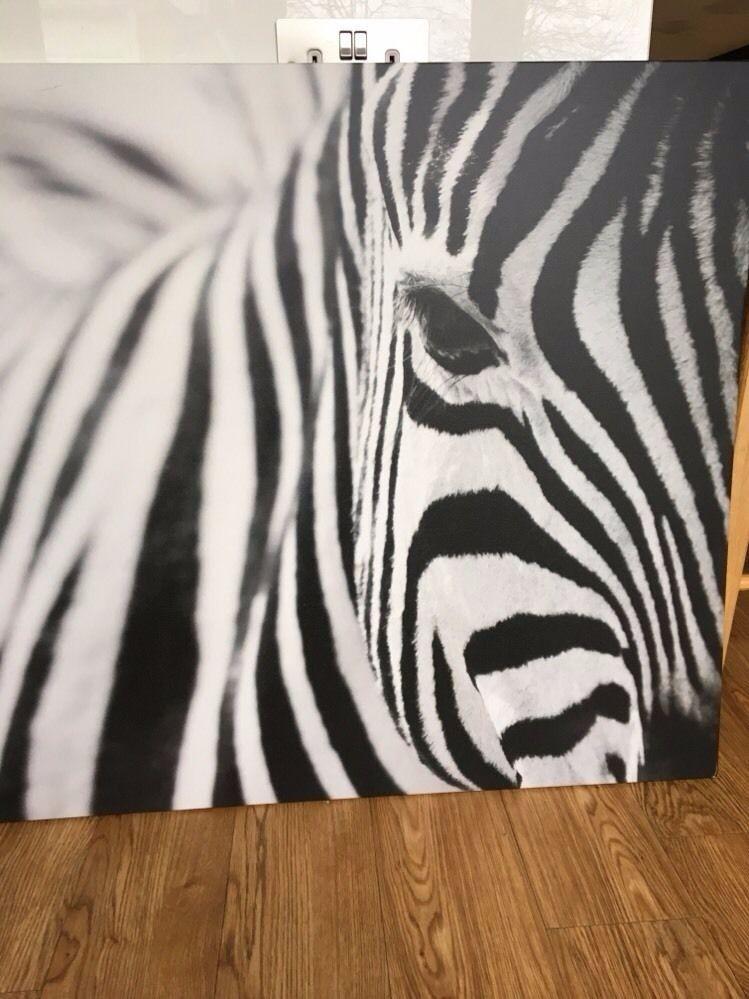 Large Ikea Zebra Canvas Print Picture Photo Great