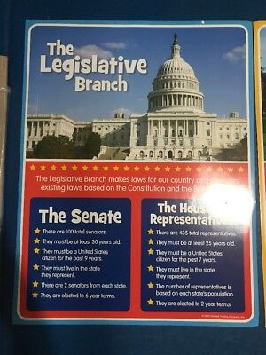 4pc Set of Branches of Government Educational Posters for Teachers (4 Branches Of Government)