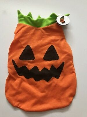 NWT Jack o' Lantern Pumpkin Pet Halloween Costume 1 piece orange green size S (Green Lantern Hund Kostüme)