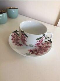 Royal Botanical Gardens Kew Porcelain Teacup and Saucer
