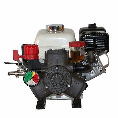 Hypro D403 Diaphragm Pump And Honda Gx160qxe Electric Start Gas Engine Assembly