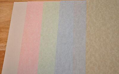Parchment Text Weight Paper Choose Color, Size, Quantity