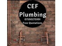 Experienced domestic and commercial plumber.