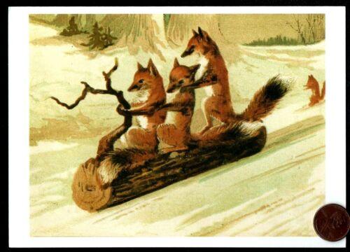CHRISTMAS Foxes Sled Sledding on Log Branch Snow Tree - Christmas Greeting Card