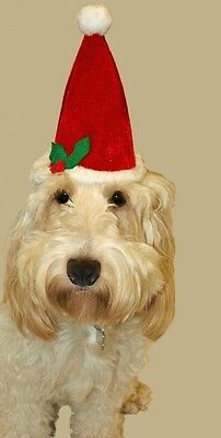 Christmas Pet Hat - Santa Hat For Cats + Dogs - Christmas Pet Gifts (DP186) A  - Cat Costume For A Dog