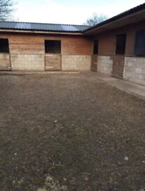 Horse Stables and Grazing