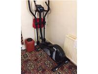 Roger black trainer