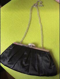 Beautiful Bag Clutch Bag (can Post)