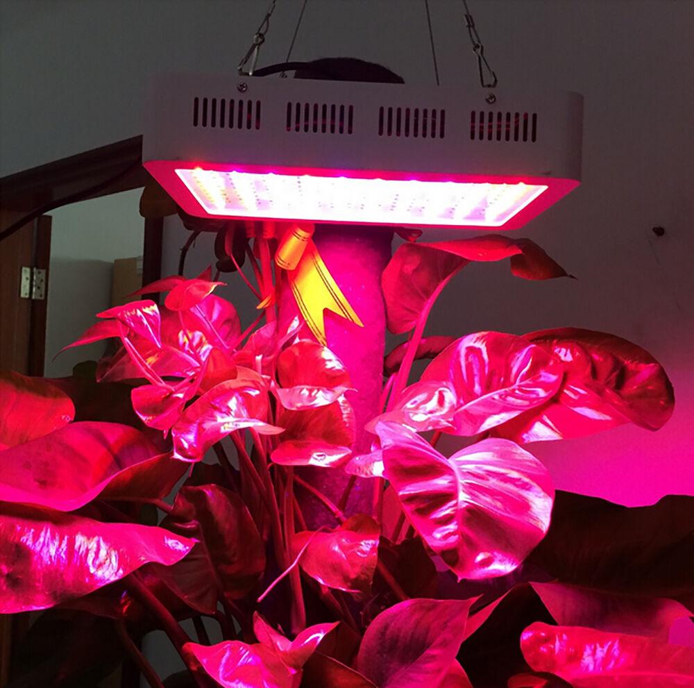 300W LED Grow Light Lamp Full Spectrum Panel Veg Flower for Medical Indoor Plant