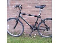 "Gent's RALEIGH. . 26""wheel size bike .. city centre"