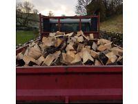 hardwood seasoned logs