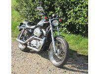 Harley Davidson Sportster 2003 XL883 H