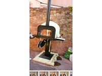 Esse wood burning pizza oven