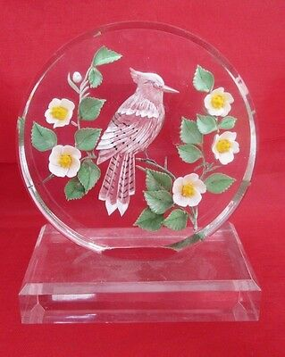 Woodpecker and flowers round acrylic plastic Bird Paperweight
