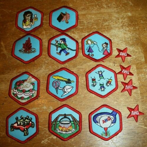 LOT 11 American Heritage Girls Patch + 5 Service Stars          LOT #2