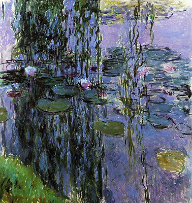 Lilies Oil Painting - Dream-art art Oil painting Claude Monet - Water-Lilies flowers in pond no framed