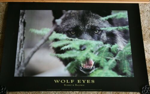 """3 New Awesome WOLF PRINT POSTERS from the Wildlife Collection 1992 (24"""" X 32"""")"""
