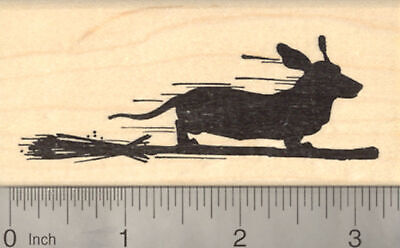 Halloween Dachshund Dog Rubber Stamp, on Witch Broomstick J22310 WM - Dachshund Halloween