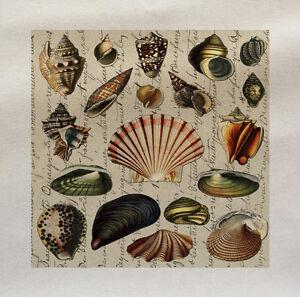 Vintage-conchiglie-di-mare-Tessuto-Di-Cotone-Panel-Realizzare