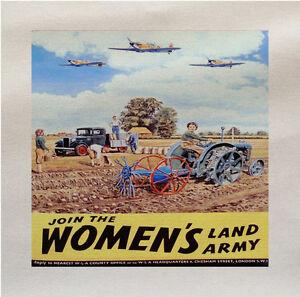 Di-Donna-Land-Soldato-World-War-Stampato-Tessuto-Panel-Realizzare