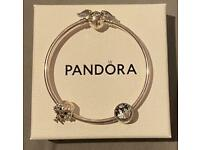 Genuine Harry Potter Pandora Bracelet and Charms