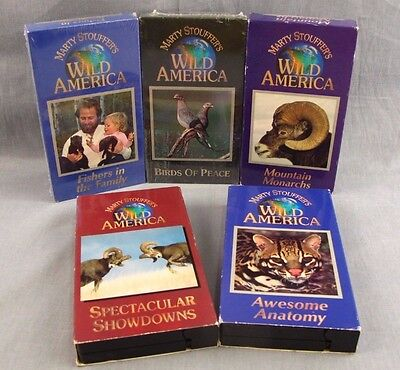Marty Stouffer's Wild America Lot of 5 VHS Videos Birds of Peace Awesome Anatomy