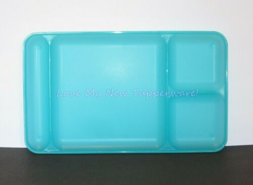 "Tupperware Large Divided Serving TV Tray Sturdy 15"" x 9"" Tropical Water New"