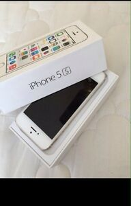 iPhone 5s gold 16 gb fido