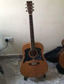 Tanglewood Earth 200 Guitar 1990's