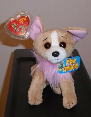 Ty 2.0 Beanie Baby ~ PICO the Chihuahua Dog (6 Inch) MWMT
