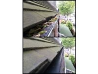 *GUTTERS CLEANED £25 FRONT/BACK..window/gutter/conservatory roof cleaning. WE USE LADDERS!