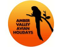 Parrot boarding at Amber Valley Holidays