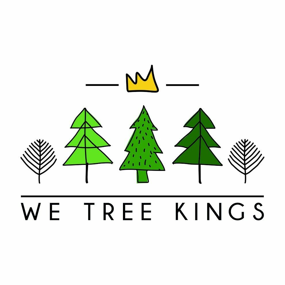 Love Christmas? We Tree Kings are hiring staff in Northampton, Warwickshire and the West Midlands