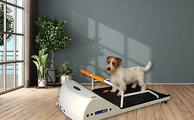 DOG EXERCISE TREADMILL PETRUN PR 700 SMALL DOG