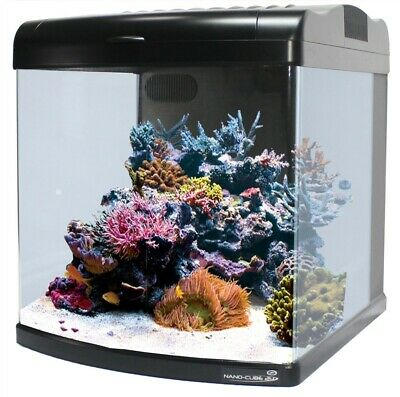 JBJ Nano Cube 24 Gallon ALL LED Aquarium Reef Fish Tank w/ Pump & Filter