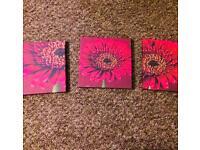 Red sunflower canvas