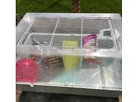Hamster cage and accessories (hamster not included)