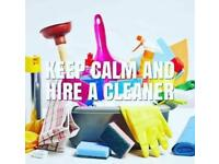 Epsom, Ewell, Banstead and surrounding area cleaning and ironing service.