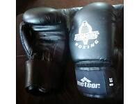 Kickboxing /boxing gloves