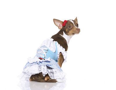 Dorothy Puppy Costume M Leg Avenue Dog Wizard of Oz Dress