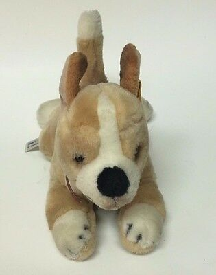 Steiff Knopf Im Ohr Chihuahua American Kennel Club Toy Stuffed Plush 10""