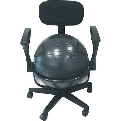 Balance Ball Chair Owner S Guide To Business And