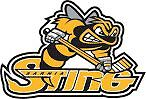 LOOKING FOR SARNIA STING FLEX PASSES