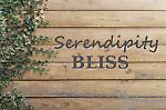 serendipity.bliss