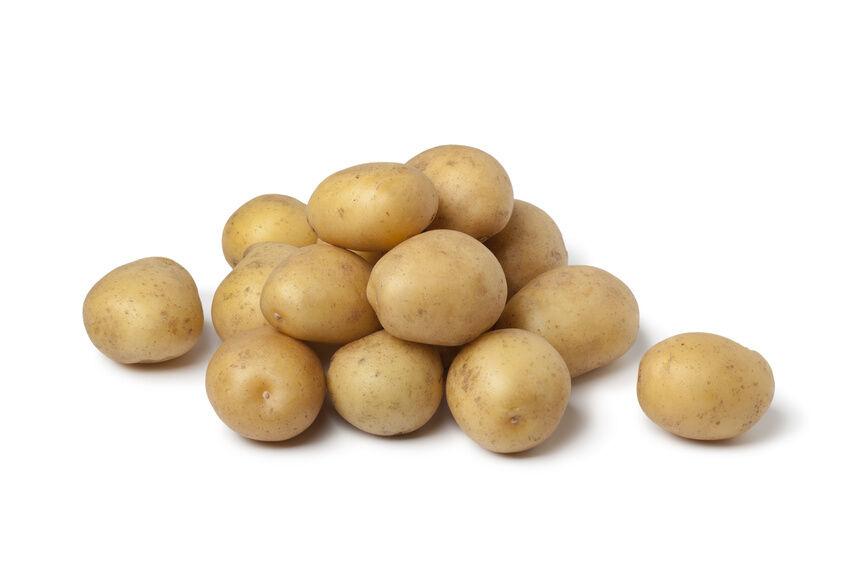 Kleine kartoffelkunde die beliebtesten arten ebay for Kleine teichfische arten