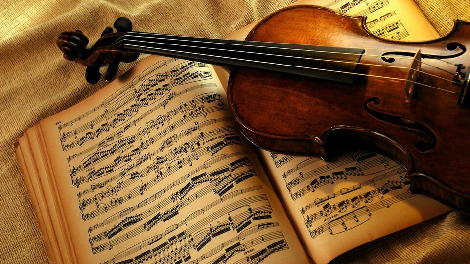 Pianista concertista e violinista offresi