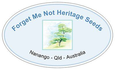 Forget Me Not Heritage Seeds
